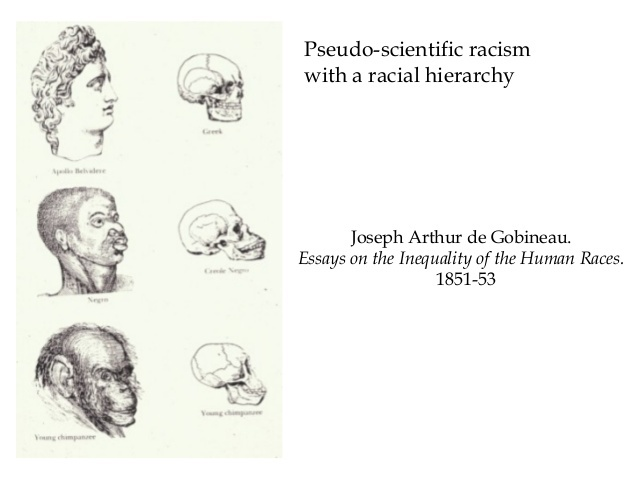 f9c6e7908b317 Arthur de Gobineau  Developer of the Pseudo Aryan Master Race Theory ...
