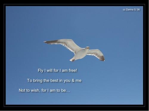 Fly_I_Will