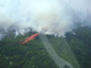 Picture_of_the_AFS_resource_P-3_Orion_Retardant_Tanker,_provided_by_Alaska_Division_of_forestry
