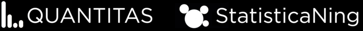 StatisticaNing Logo