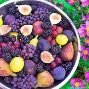 purple raw vegan love