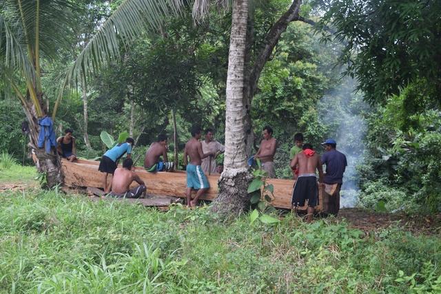 Making a dugout canoe