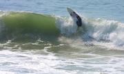 Long Beach 008