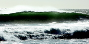 Green-White-and Dark-Cape Town (10)