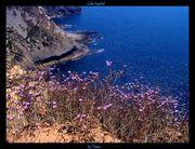 Portugal Algarve et Côte de l'Alentejo