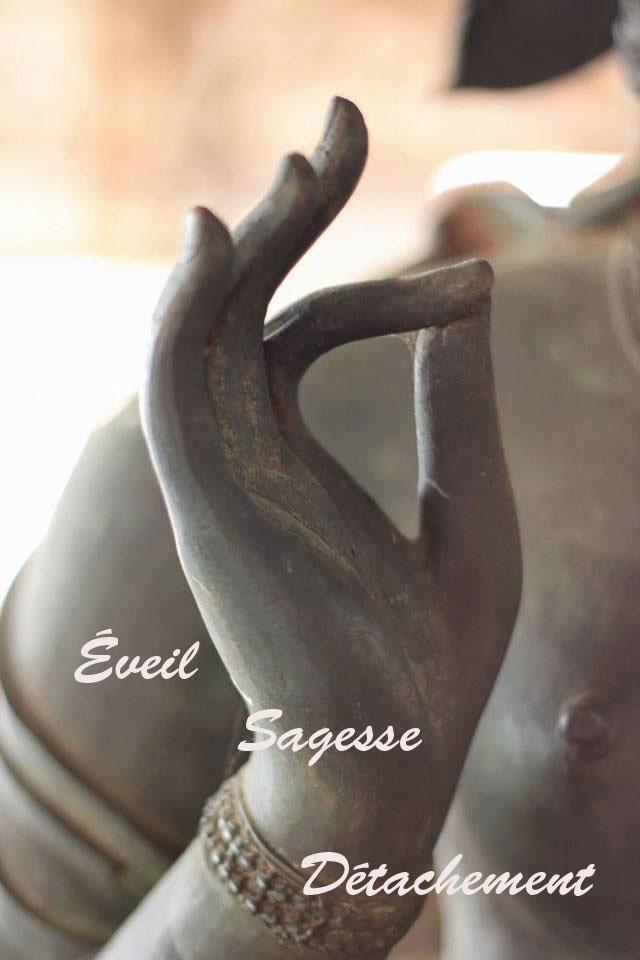 EVEIL-SAGESSE