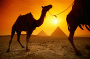 photo_egypt_the pyramids
