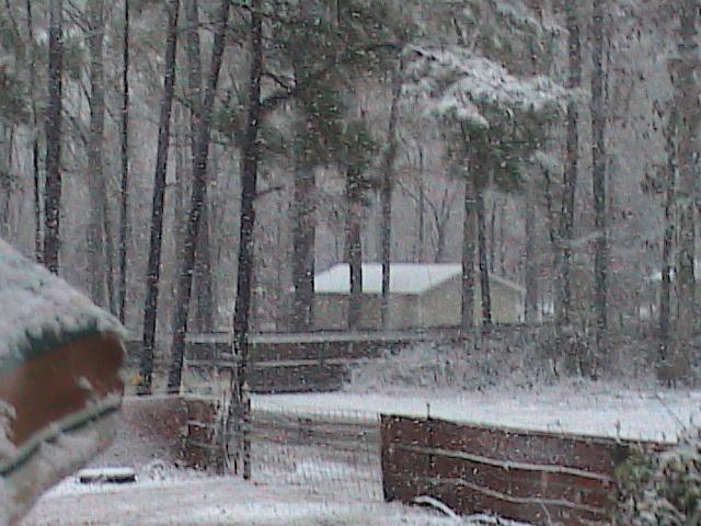 Snow is MS Dec 11 08