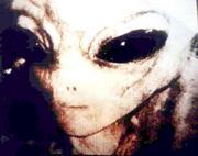 gray_alien_50yrs_of_denial_photo1