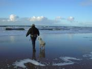 man-walking-on-the-beach