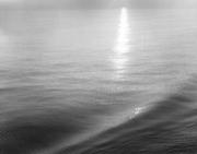 Adriatic Sea, 1980