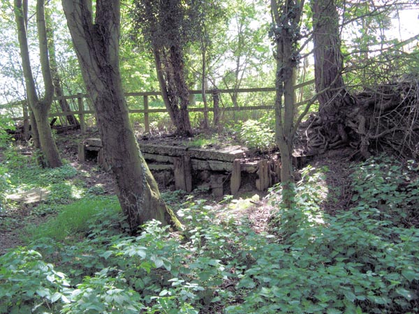 SMJ remains of cattle pen at Byfield