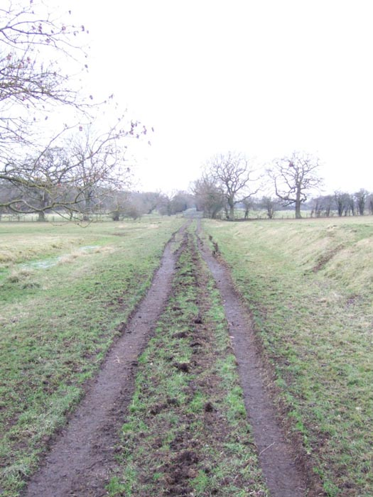 Near Greens Norton -  View towards Blakesley
