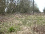 Ravenstone Wood Jc