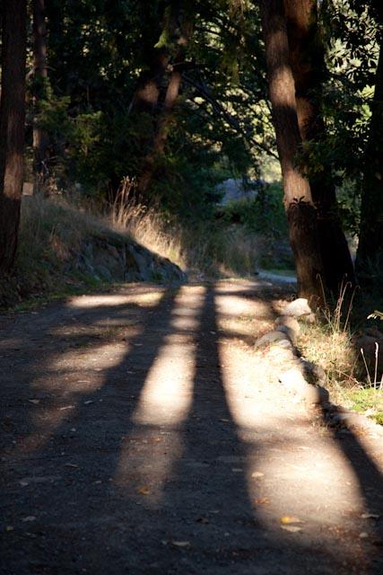 Casting Long Shadows
