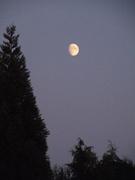 Pacific Shores Moon