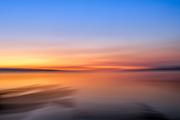 Arbutus beach