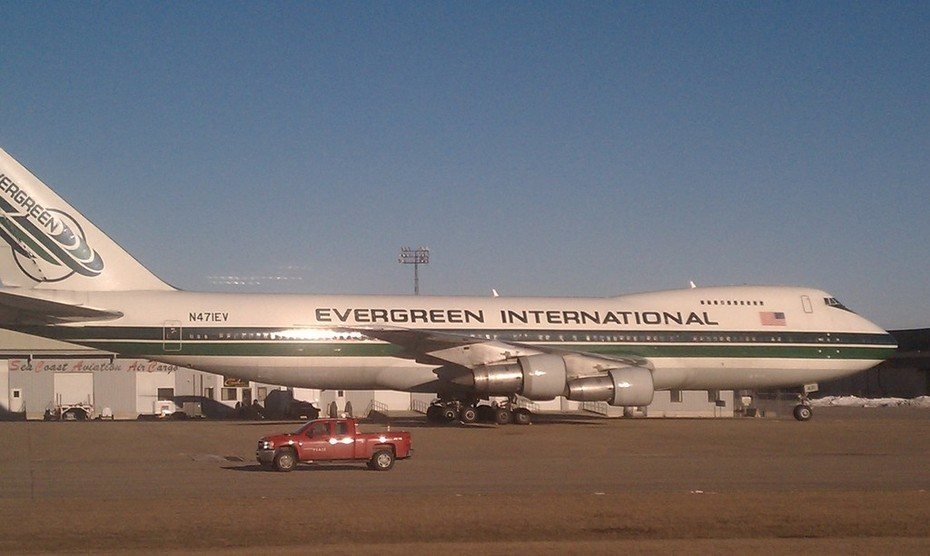 Evergreen plane