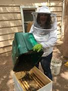 4 27 17 installing my first hive