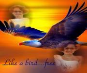 SHE'S AN EAGLE WHEN SHE FLIES