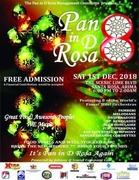 Pan in D Rosa - 2018