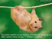 hanging-on (1)