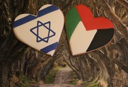 Cookies For Peace