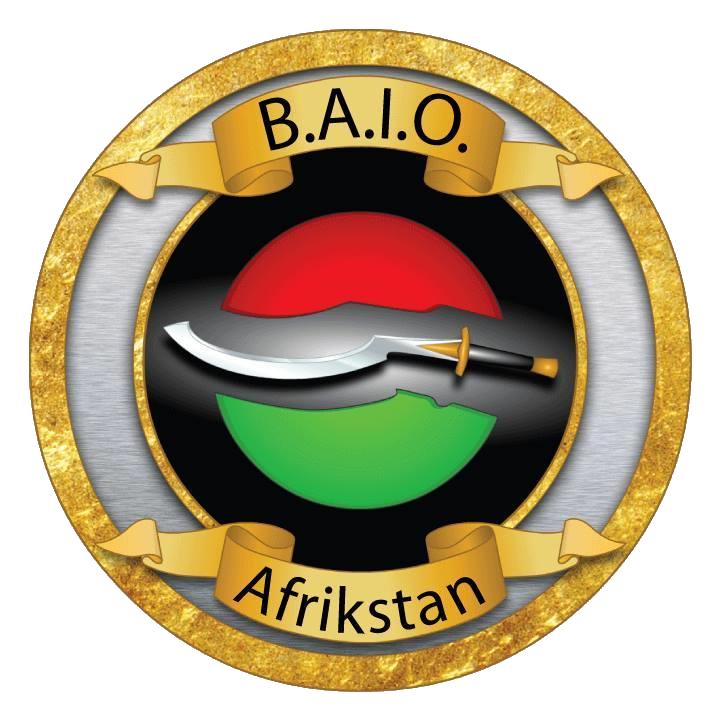 Black Afrikan Infrastructure Organization Social Network Logo