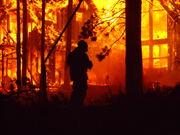 Angora Fire Photos 166