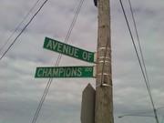 avenue of champions