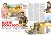 Muere poco a poco  el campo en Juchitán