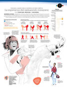 La esperanza del taekwondo mexicano