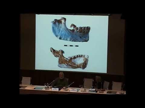 La Cueva de El Sidrón (Piloña, Asturias). Investigación interdisciplinar de un grupo neandertal
