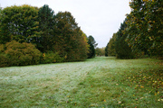 Väterchen Frost in Bad Meinberg - Autumn in Northern Germany