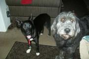 Bertha & Lucy