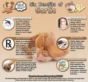 6 Benifits of Garlic