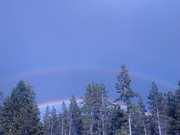 Rainbow Gathering 2013