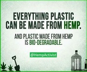 Hemp can save the planet!