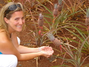 My wife loves tiny pineapples