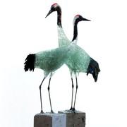 kraanvogelpaar