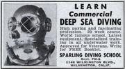Sparling Diving School