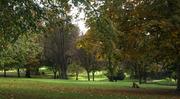 Autumn Park, Oct 16th 08