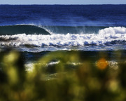 mind surf on the south coast