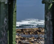 Looking out my backdoor-IMG_8311