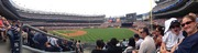 Yankees Stadium panorama