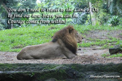 lioncourage