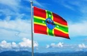 Zomi National Flag