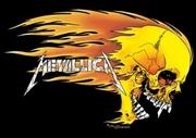 draft_lens2108524module10834236photo_1218115446lgpp0338metallica-logo-skull-flames-metallica-poster[2]