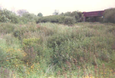Towcester Blisworth branch splitting off to left 1982