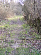 Ravenstone Wood Junction